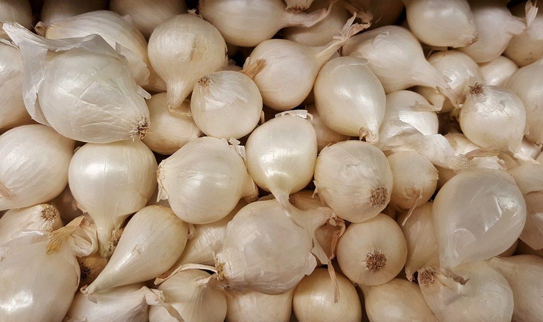 Yuk Intip Resep Bawang Putih Tunggal Yang Memilki Banyak Manfaat