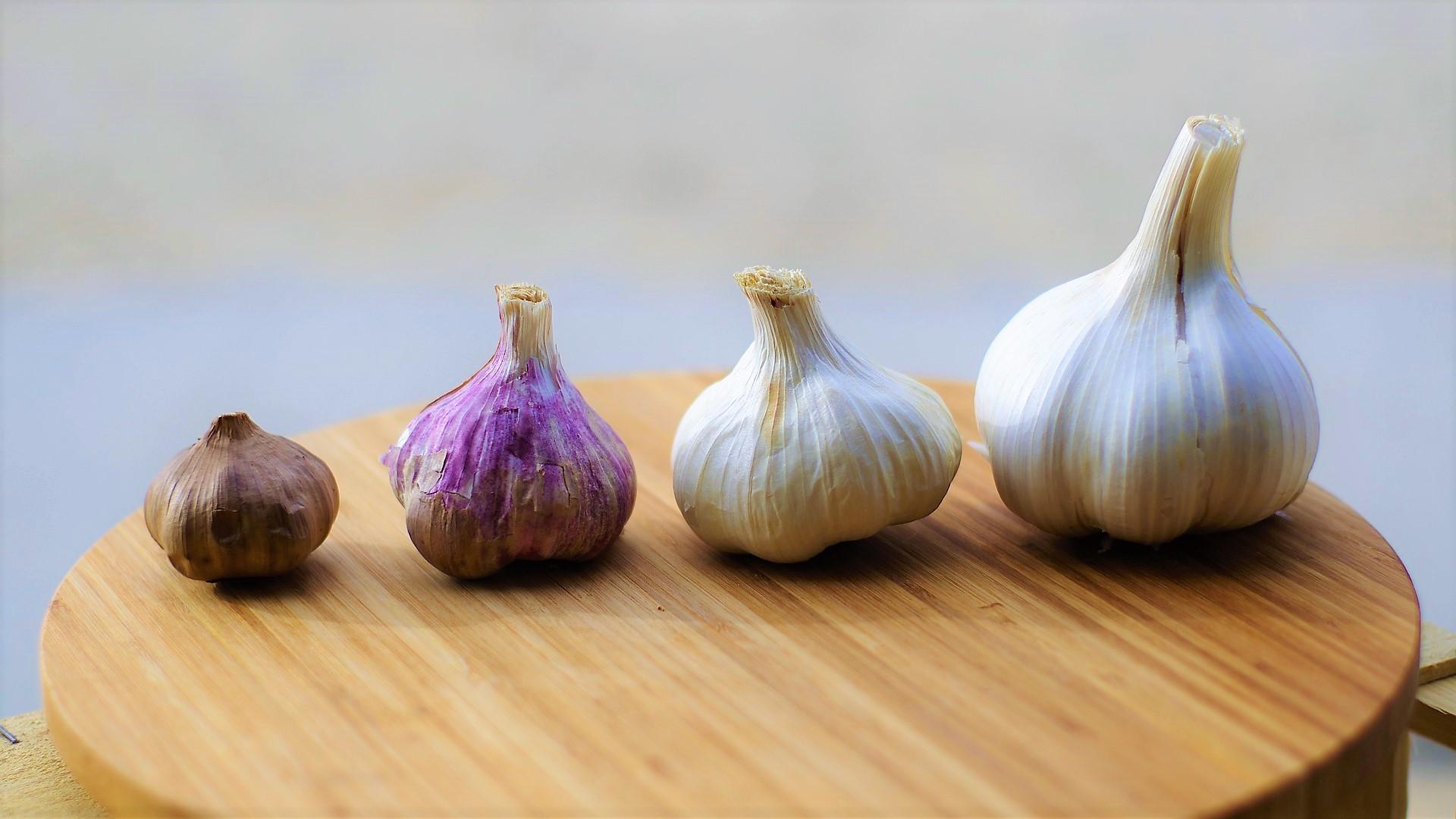 bawang putih matang